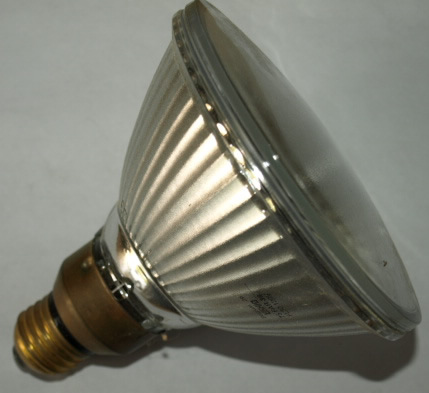 Conejo Valley Lighting lamp Par 38