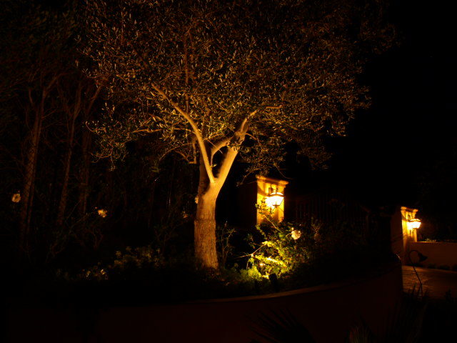 Conejo Valley Lighting Landscape Lights